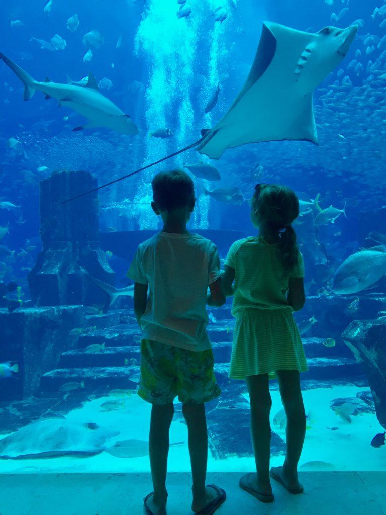 bambini all'acquario di Dubai