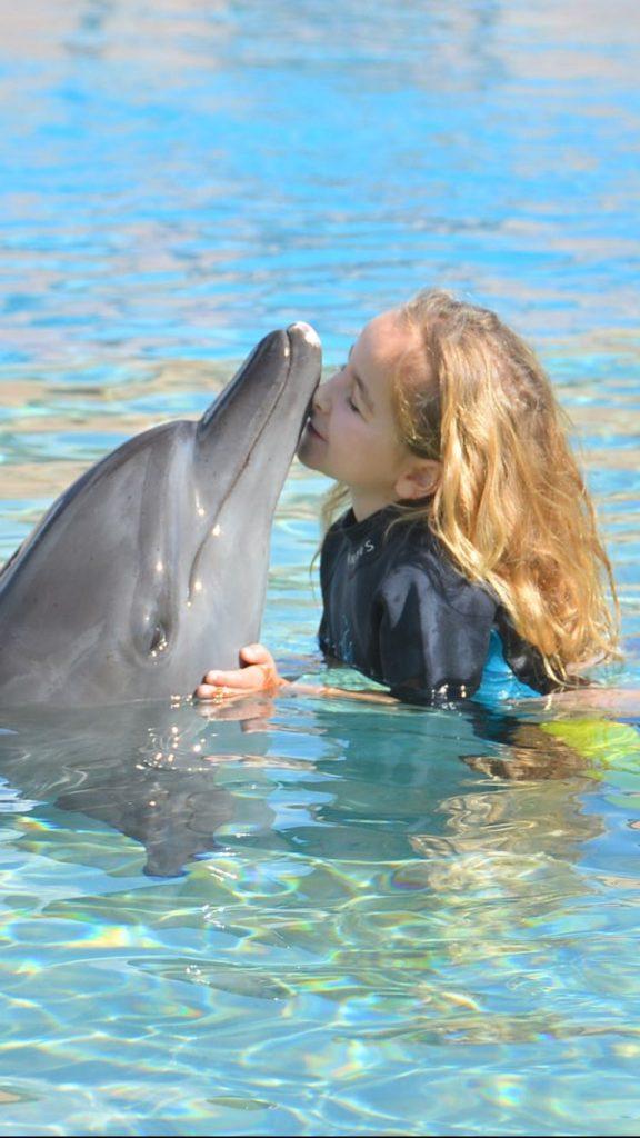 dubai con bambini al delfinario