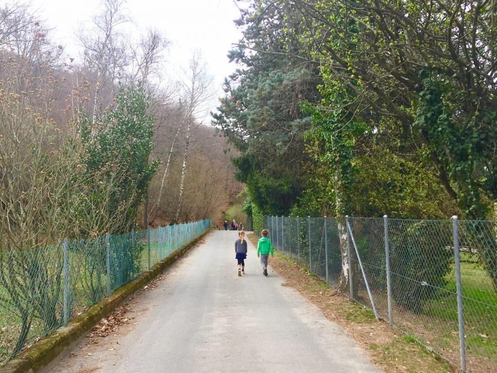 carona - alpe vicania inizio passeggiata