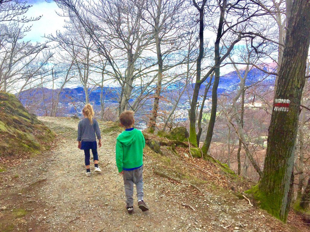 sentiero per l'alpe vicania