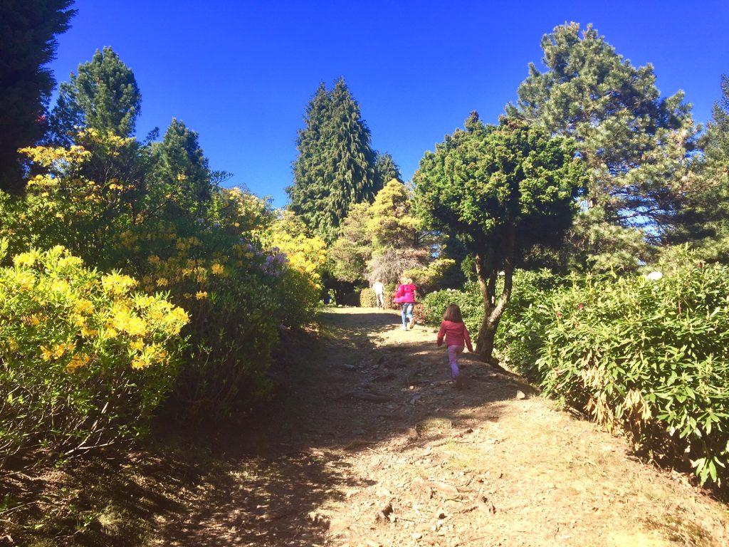 sentieri nel Parco San Grato