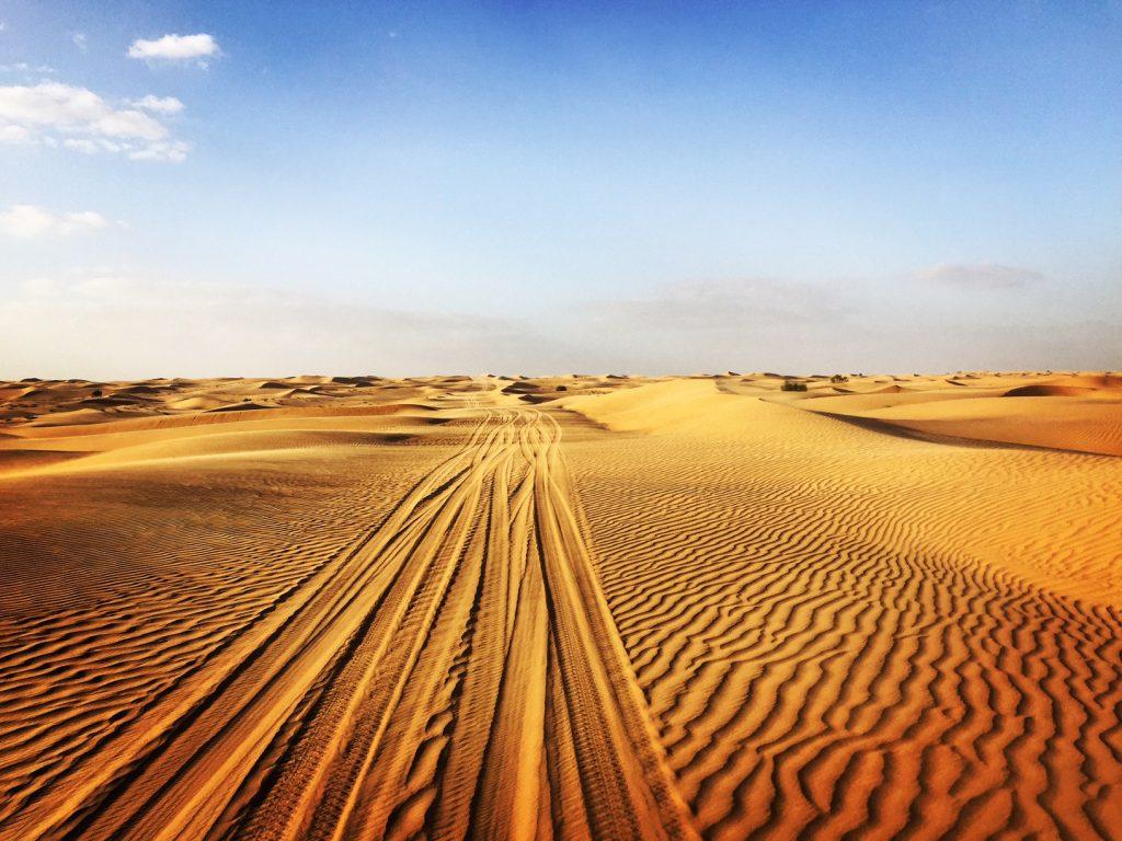 abu dhabi escursione nel deserto