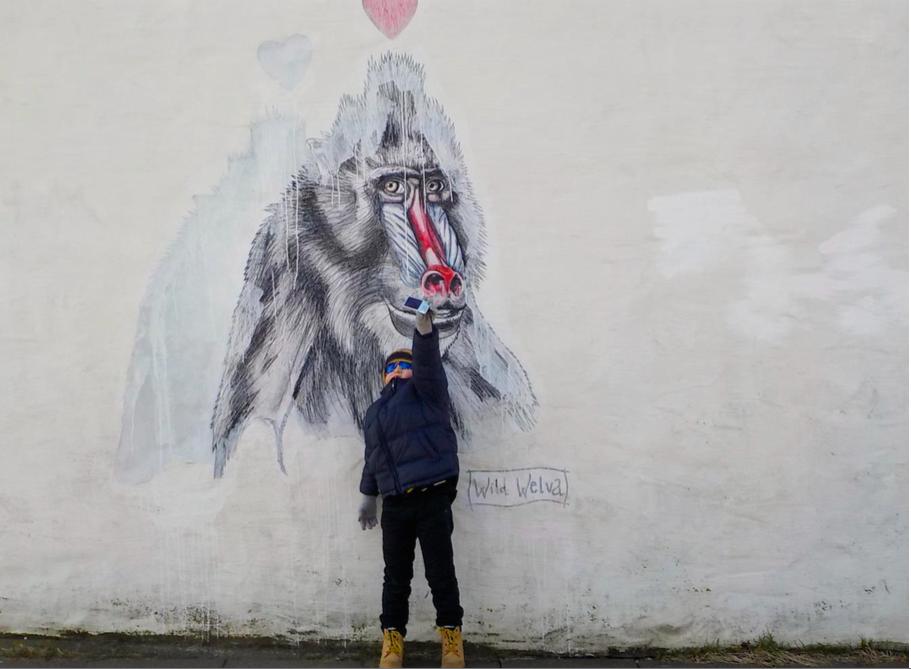 Reykjavík con bambini. Islanda. graffiti