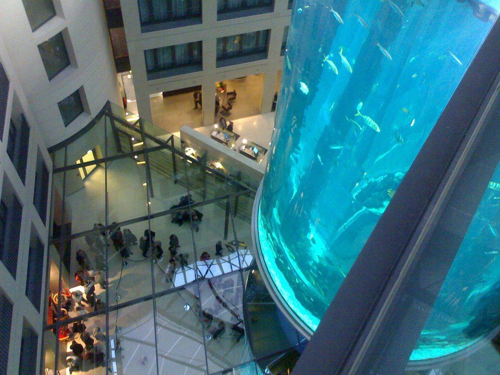 Berlino con bambini acquario