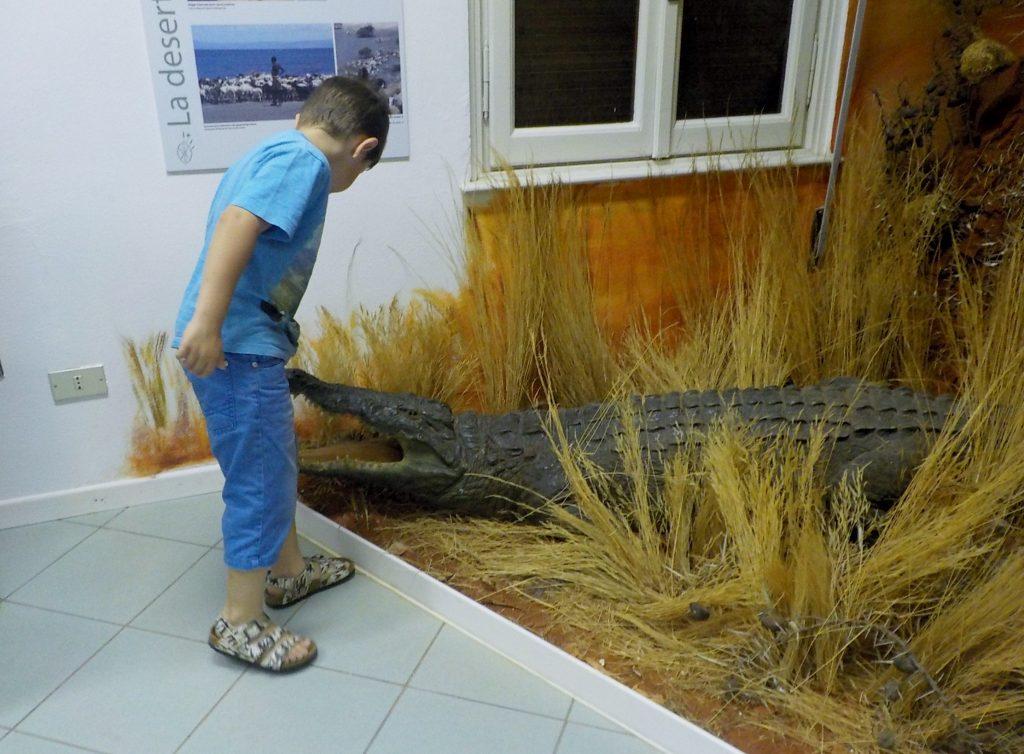 museo castiglioni di varese con bambini coccodrillo