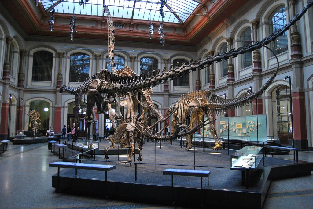 Berlino con bambini, dinosauro