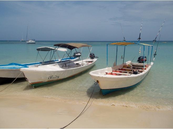 caraibi crociera: roatan barche