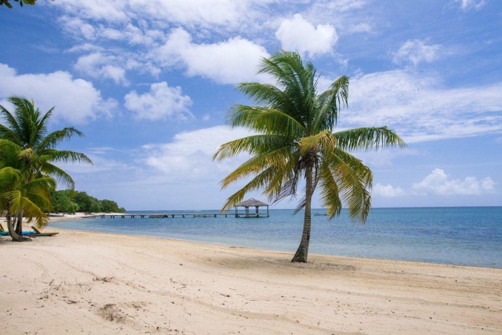 caraibi crociera: roatan