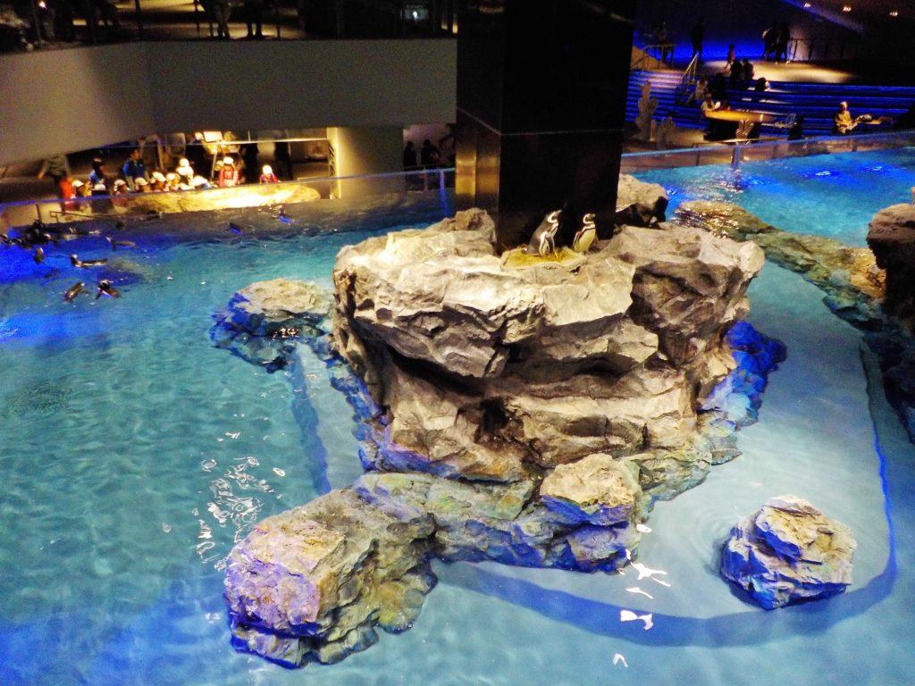 sumida acquario di tokyo con bamibni