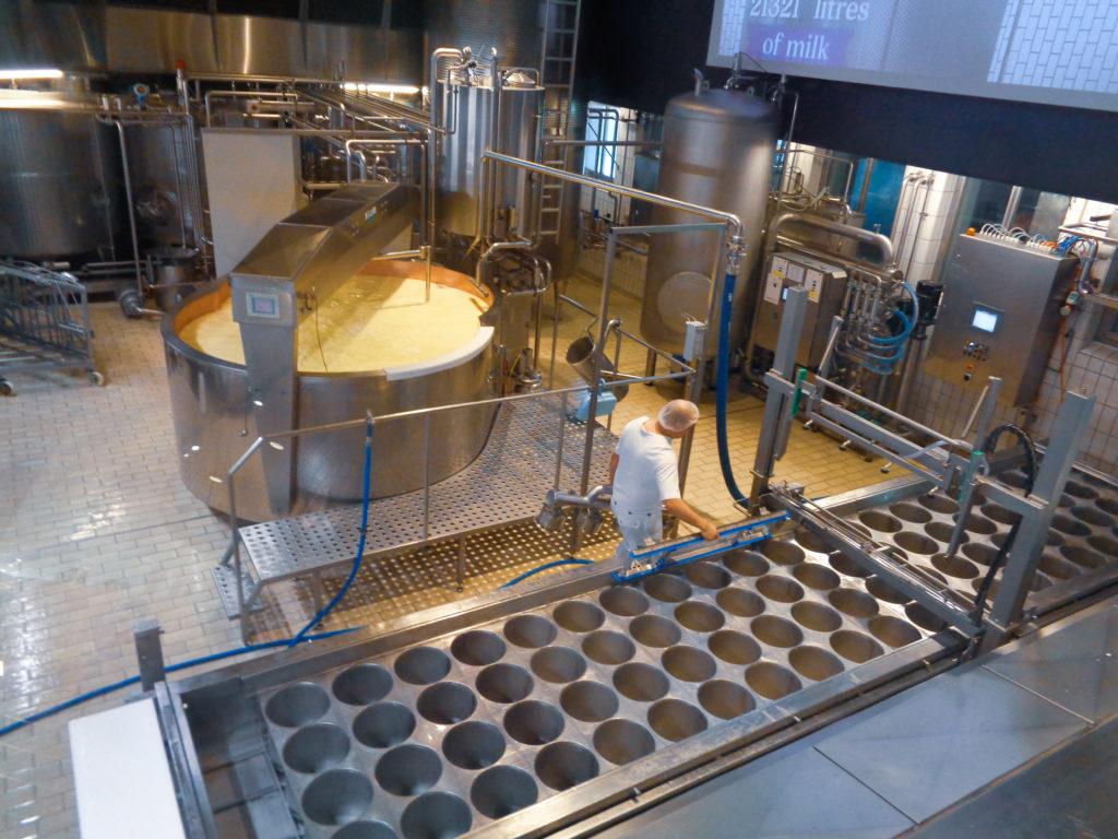 caseificio dimostrativo di stein, appenzello (svizzera)...  produzione formaggio