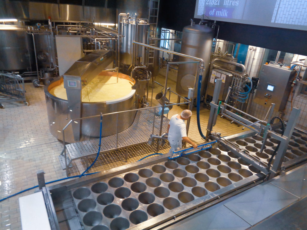 demonstration dairy stein, appenzell (switzerland). cheese production