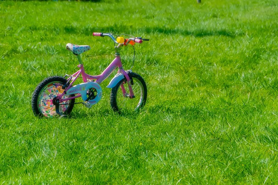 bicicletta nel prato