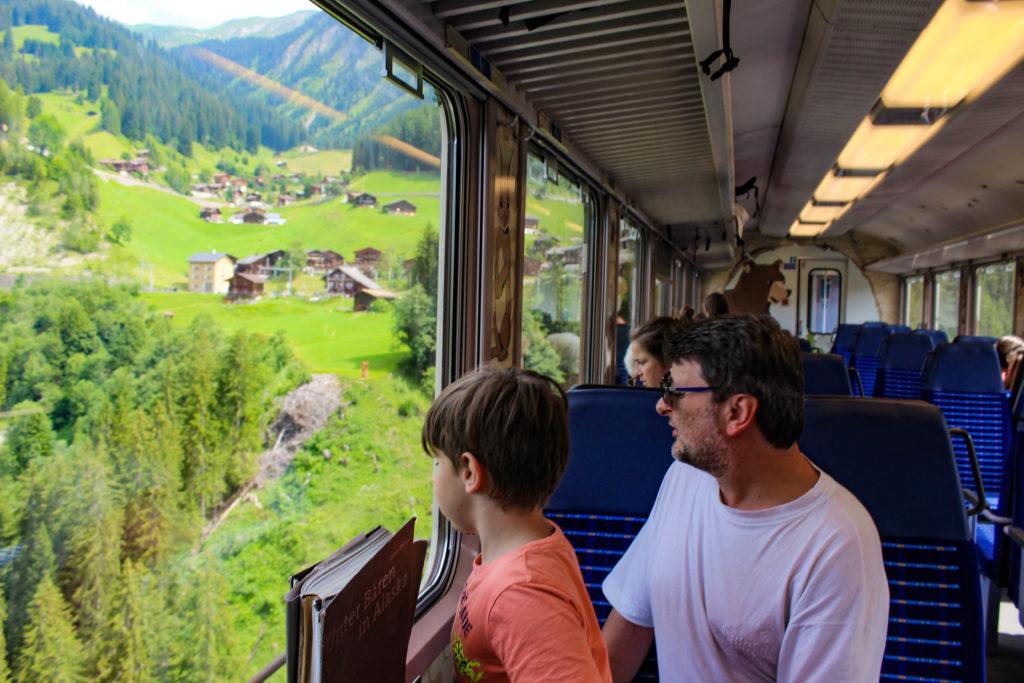 guardando dal finestrino del treno degli orsi