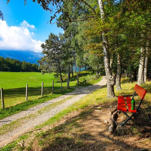 helsana trails