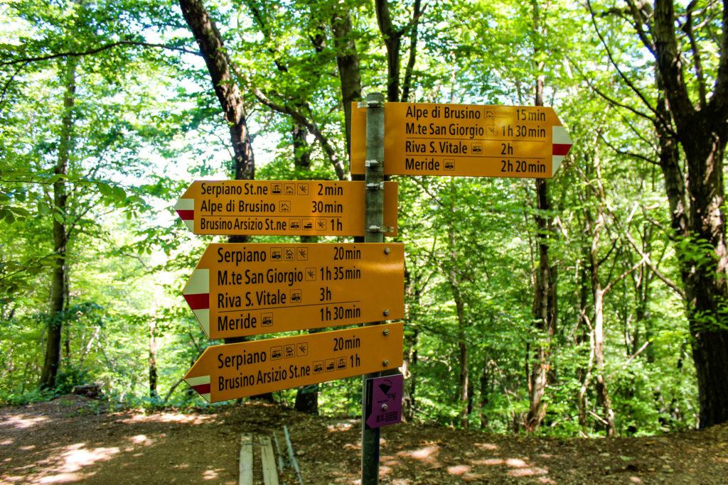 alpe di brusino, cartelli nel bosco