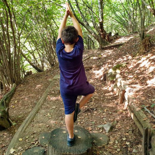 percorso yoga gambarogno