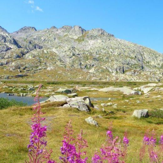 passi alpini svizzeri