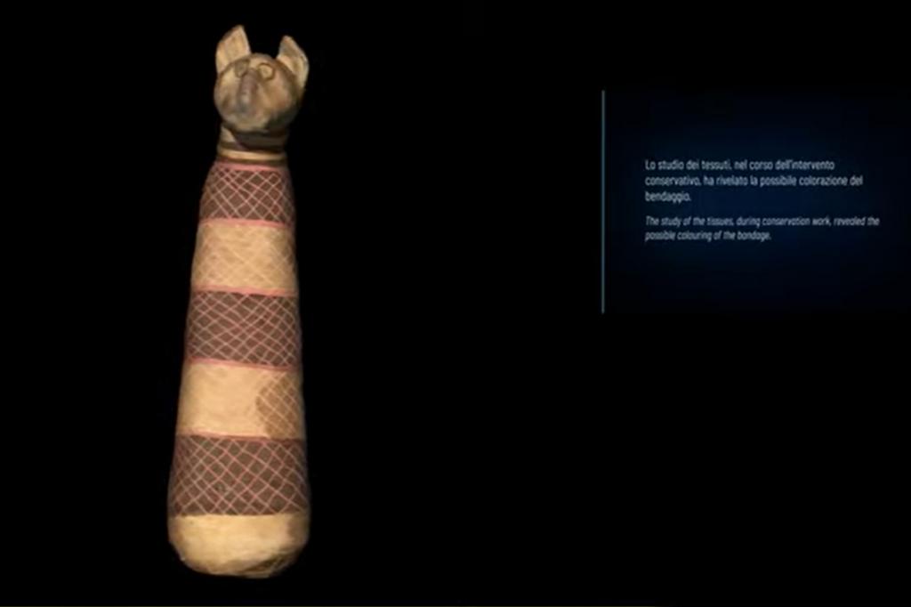 museo egizio torino mummia di gatto