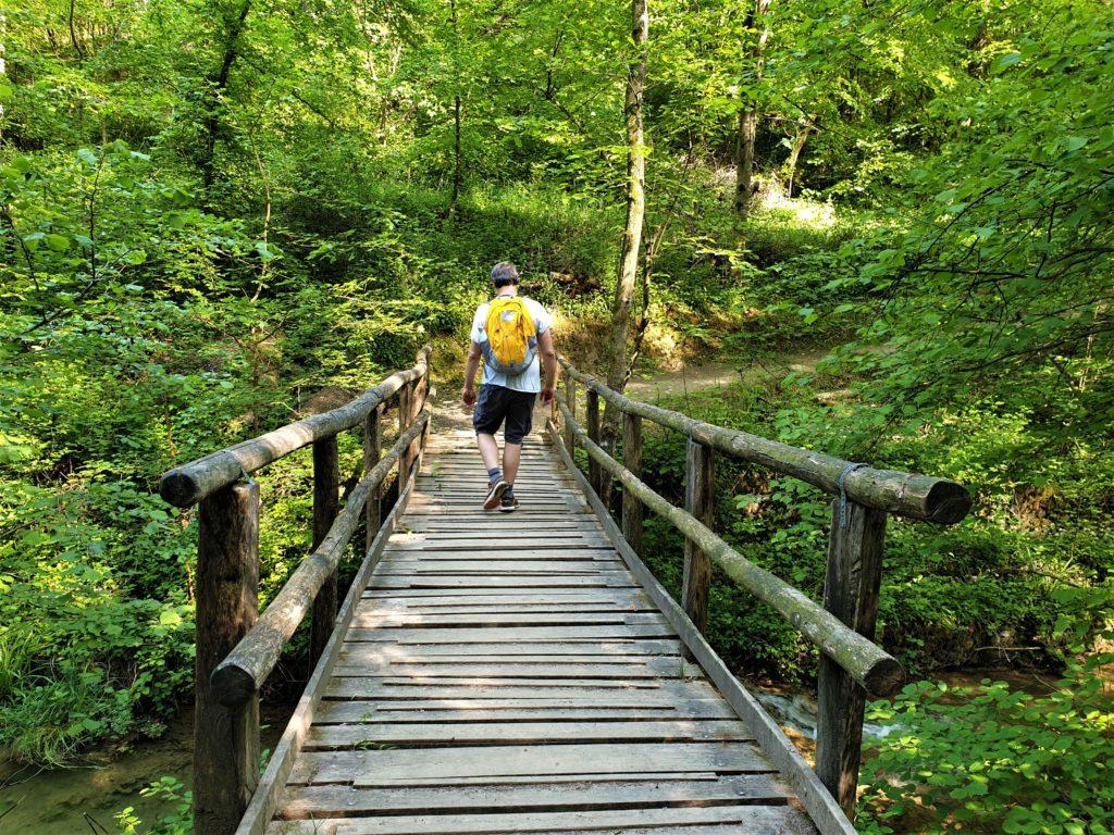 ponti del Parco della Valle della Motta