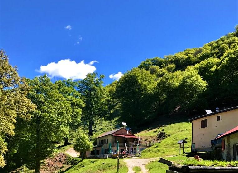Alpe Bolla