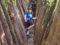 Bobosco, la boccia al bosco (Valle Verzasca)