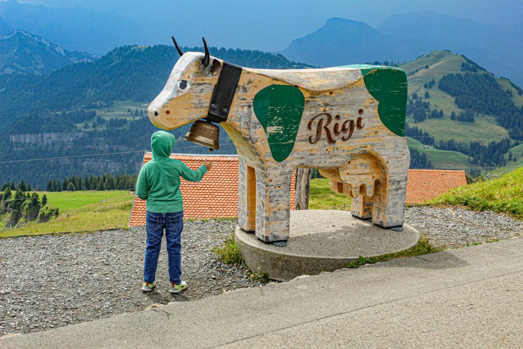 mucca a kulm, con campanaccio