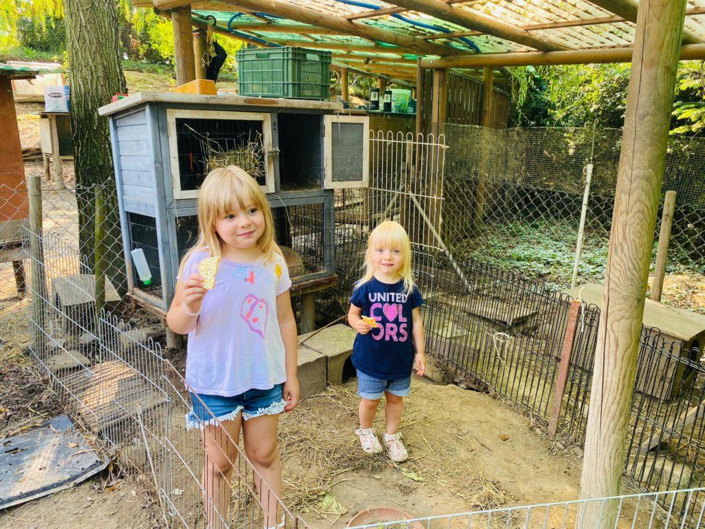 bambine al rifugio dei conigli di coldrerio