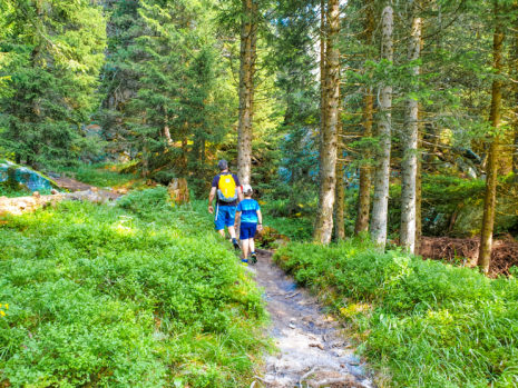 Campra: vivere la natura alpina in estate e in inverno