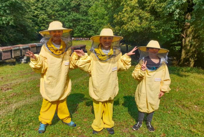 api arogno esperienza