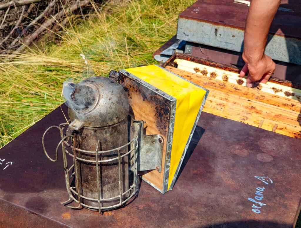 affumicatore per le api